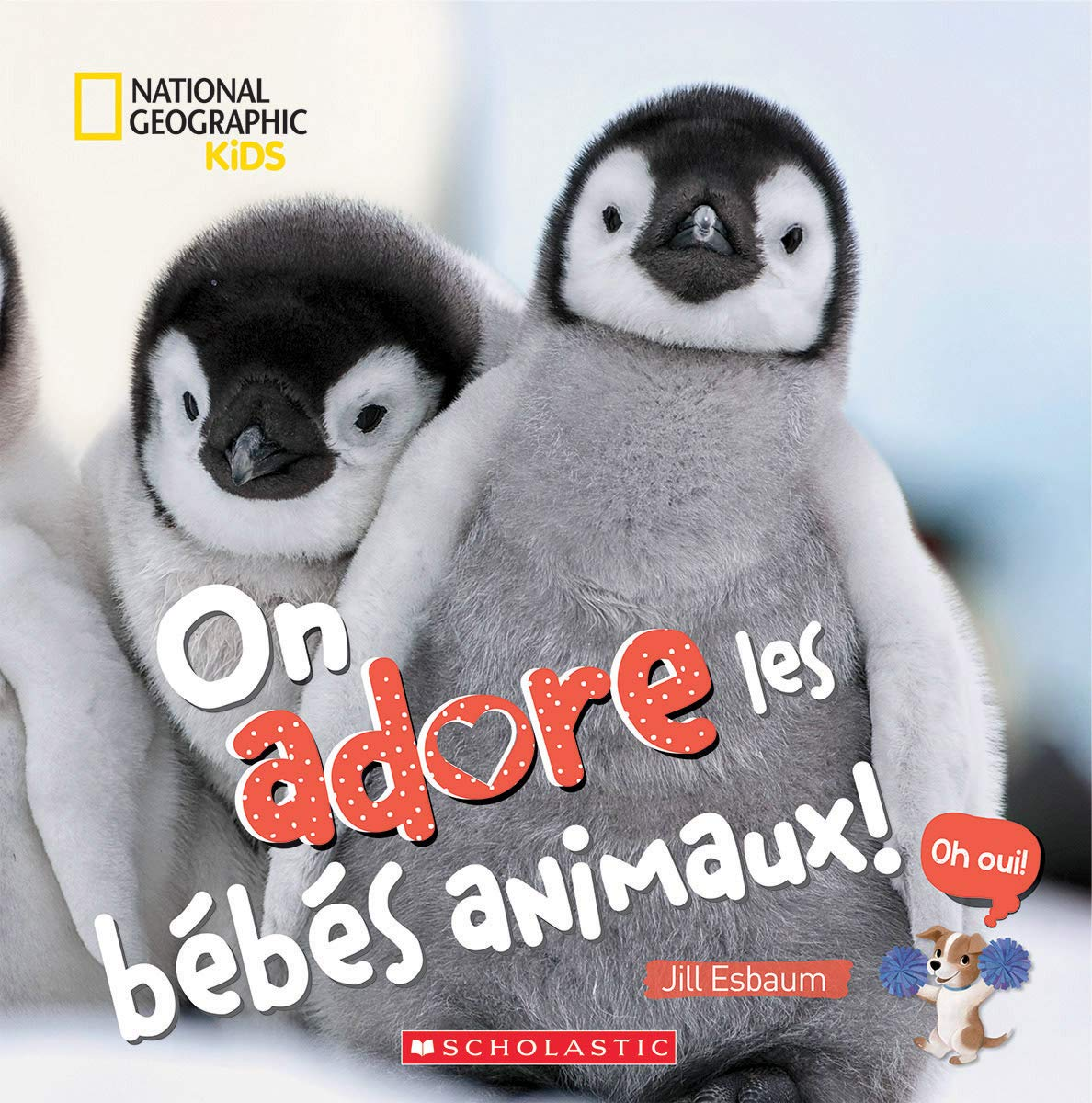 On adore les bébés animaux