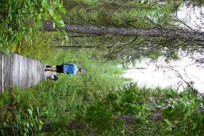 Ontario Parks Pass